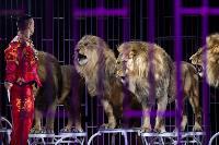 Шоу фонтанов «13 месяцев»: успей увидеть уникальную программу в Тульском цирке, Фото: 220