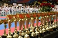 Чемпионат и первенство Тульской области по карате, Фото: 13