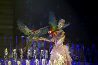 Шоу фонтанов «13 месяцев» в Тульском цирке – подарите себе и близким путевку в сказку!, Фото: 32