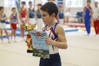 Спортивная гимнастика в Туле 3.12, Фото: 52