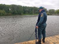 В пруду Центрального парка работала водолазная группа, Фото: 7