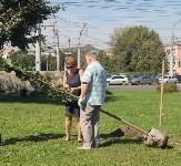 Высадка деревьев и растений ко Дню города, Фото: 5