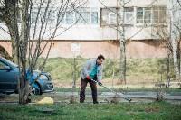 Посадка деревьев во дворе на ул. Максимовского, 23, Фото: 37