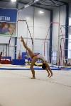 Спортивная гимнастика в Туле 3.12, Фото: 141