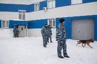 """""""Студенческий десант"""" - 2017., Фото: 48"""