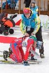 Чемпионат мира по спортивному ориентированию на лыжах в Алексине. Последний день., Фото: 41