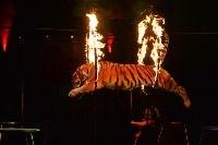Цирковое шоу, Фото: 123