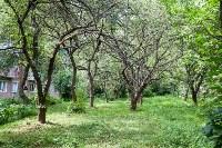 Яблоневый сад и роща на ул. Серова, Фото: 8