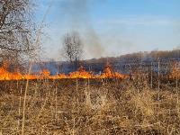В Федоровке огонь с горящего поля едва не перекинулся на дома, Фото: 22