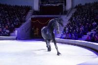Туляков приглашают на новогоднее представление «Ёлка в цирке», Фото: 84