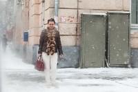 Мартовский снег в Туле, Фото: 50