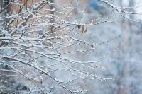 Тула после снегопада. 23.12.2014, Фото: 44