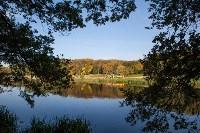 Золотая осень в Тульской области, Фото: 82