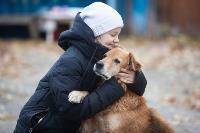 Дворняги, дворяне, двор-терьеры: 50 фото самых потрясающих уличных собак, Фото: 2