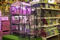 Леруа Мерлен: Какие выбрать семена и правильно ухаживать за рассадой?, Фото: 29