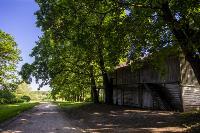 Летний день в Ясной Поляне, Фото: 8