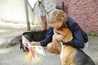 Фитнес-центр «Собака-Улыбака» в Туле: человек собаке – хендлер, Фото: 16