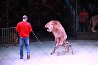 Новая программа в Тульском цирке «Нильские львы». 12 марта 2014, Фото: 15