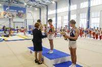 Спортивная гимнастика в Туле 3.12, Фото: 66