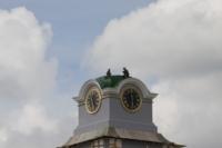 Установка шпиля на колокольню Тульского кремля, Фото: 25