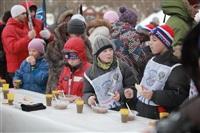 В «Лыжне России-2014» приняли участие три тысячи туляков, Фото: 59