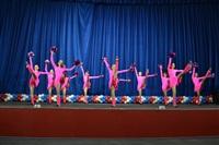 Открытый Чемпионат Тульской области по черлидингу, Фото: 14