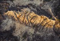 Марсианский пейзаж Александра Овсенёва, Фото: 4