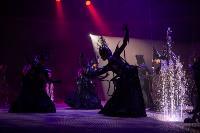 Шоу фонтанов «13 месяцев»: успей увидеть уникальную программу в Тульском цирке, Фото: 254