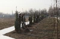 Возле мемориала «Защитникам неба Отечества» высадили еловую аллею , Фото: 3