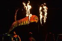 Цирковое шоу, Фото: 124