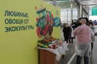 депутаты Тульской облдумы в ТК Тульский, Фото: 20