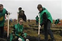 В музее-заповеднике «Куликово поле» высадили 6 тысяч деревьев, Фото: 16
