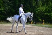 В Ясной поляне стартовал турнир по конному спорту, Фото: 116