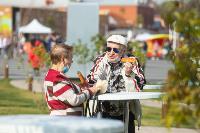 День города-2020 и 500-летие Тульского кремля: как это было? , Фото: 32