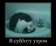 , Фото: 4