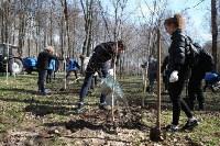 Посадка деревьев в Комсомольском парке, Фото: 34