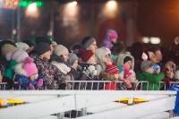 Туляки отметили Старый Новый год ледовым шоу, Фото: 4