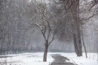 Мартовский снег в Туле, Фото: 70