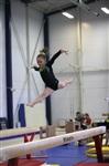 Открытый турнир по спортивной гимнастике. 23-30 ноября 2013, Фото: 10
