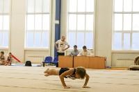Спортивная гимнастика в Туле 3.12, Фото: 25