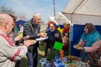 Фестиваль Сад Палисад луковый расклад, Фото: 39