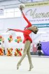 Художественная гимнастика. «Осенний вальс-2015»., Фото: 127