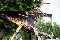 Умелец из Богородицка, Фото: 8