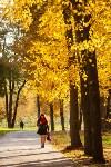 Золотая осень в Туле-2019, Фото: 115