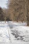 Центральный парк культуры и отдыха им. Белоусова. Декабрь 2013, Фото: 15