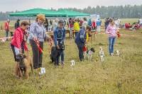 Международная выставка собак, Барсучок. 5.09.2015, Фото: 42