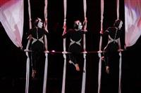 В Тульском цирке прошла премьера аква-шоу, Фото: 40