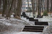 Гололед в Платоновском парке, Фото: 7