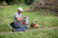 Мне нужнее: в тульском дворе подрядчик самовольно вырубил 15 ясеней и забрал их себе, Фото: 27
