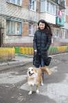 Юлия Пялова и ее животные, Фото: 3